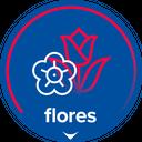 Carrefour Flores