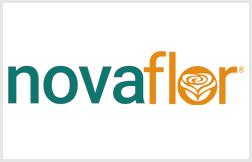 Nova Flor