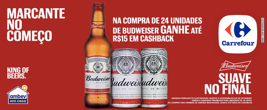 [Revenue]-B5-Budweiser-Carrefour
