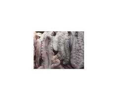 Tentáculos de polvo congelado kg