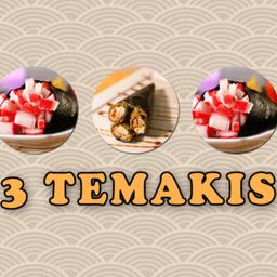 3 Temaki (super Promoção)