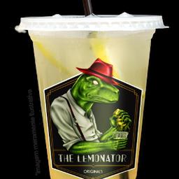 Lemonade 300ml