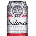 Cerveja Budweiser Lata