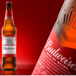 Cerveja Budweiser Long Neck - 330ml