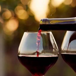 Argentina: Trapiche Vineyards, Malbec