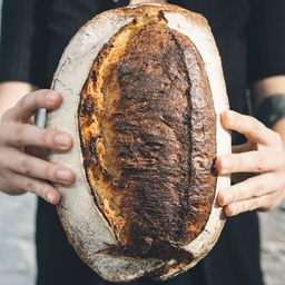 Pão do campo