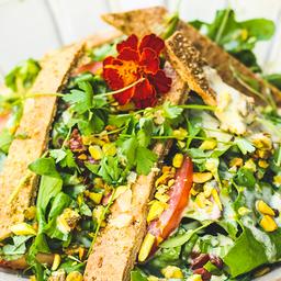 Salada Fattoush Orgânica