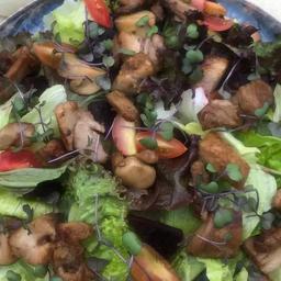 Salada Costelinha