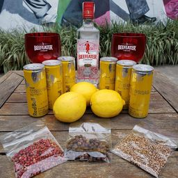 Combo Beefeater com Red Bull Tropical