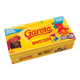 Bombom Garoto Sortidos 250 g