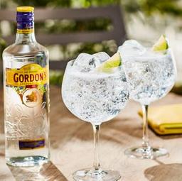 Gin & Tonica Gordon