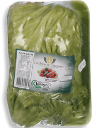 Alface Americana Orgânica Go Green 250g