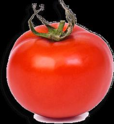 Tomate Holandes Com Rama