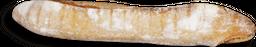 Baguette Eataly 1 U