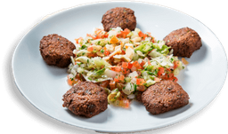 Falafel + Salada Alepo