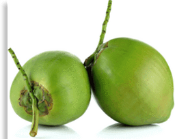 Coco Verde na Fruta