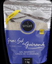 Sal Grosso Cinza Guerande Smart 1 Kg