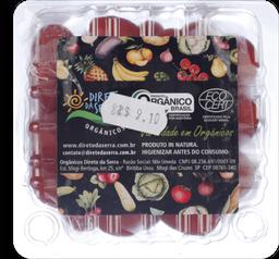 Tomate Sweet Grape Da Serra Orgânico 180g