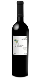 Vinho Monte Paschoal Virtus Tannat 750 mL