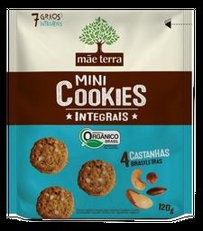 Cookies Mãe Terra Integral Castanha Do Brasil 120 g