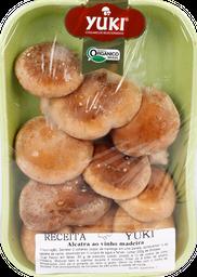Cogumelo Shitake Orgânico