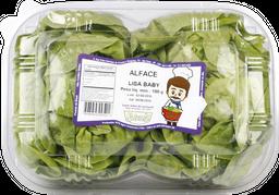 Alface Lisa Baby Naturelle 100 g