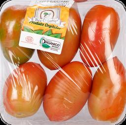 Go Green Tomate Italiano Orgânico