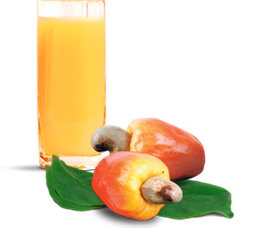Suco de Fruta de Caju