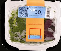 Ervas P/ Saladas Laurent 30 G