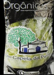 Alface Crespa Capela Orgânica