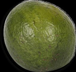 Abacate Orgânico Capela 600g