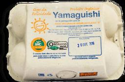 Ovo Extra Orgânico Yamaguishi Com 6