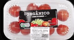 Tomate Salada Orgânico Rio Bonito 500g