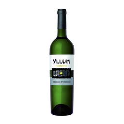 Vinho Branco Yllum Torrontés 750 mL