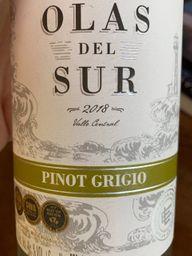 Concha Y Toro Vinho Chileno Pinot G