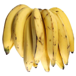 Banana Terra