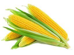 Milho Verde Viva Natural 600g