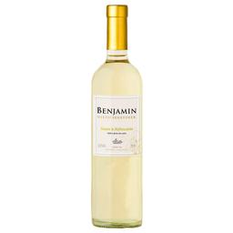Vinho Argentino Branco Suave Refrescante Benjamin Nieto 750ml