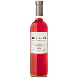Vinho Argentino Rose Suave Refrescante Benjamin Nieto 750ml