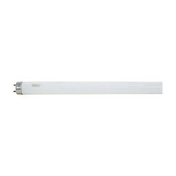 Lâmpada Fluorescente Tubular Luz Branca 36w T8 6400k