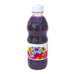Bebida Indaia Citrus Uva 330 mL