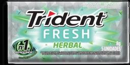 Goma Mascar Trident Fresh Herbal 8 g