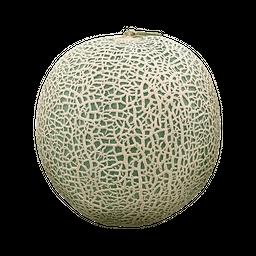 Melão Cantalupe