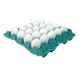 Katayama Ovos Branco Com 20 Unidades