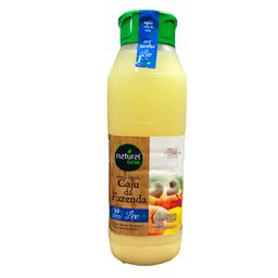 Suco Natural One - Caju da Fazenda - 300ml