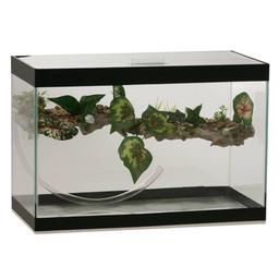 Terrário Aquaterrário para Tartaruga Com Cascata (Tamanho 2)