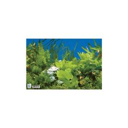 Decoração para Aquário de Água Doce Mr.Pet (20cmx30cm)