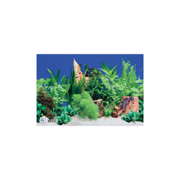 Decoração para Aquário de Água Doce Mr.Pet (25cmx40cm)