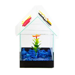 Aquário Beteira Design para Peixes Casinha Decorada