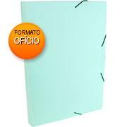 Pasta c/ elástico polipropileno 235x335x30 verde pastel 0248